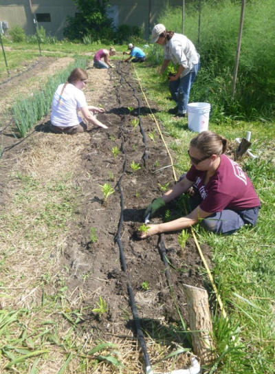 FROM READERS: Center for Urban Agriculture gets people involved with food production at its roots