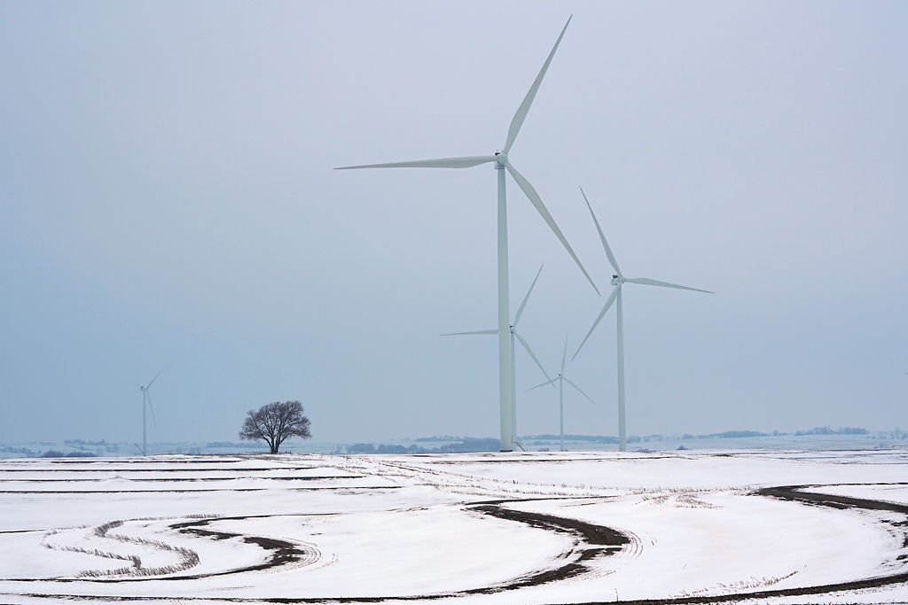 The 350-foot tall wind turbines of Atchison County stand next to a tree