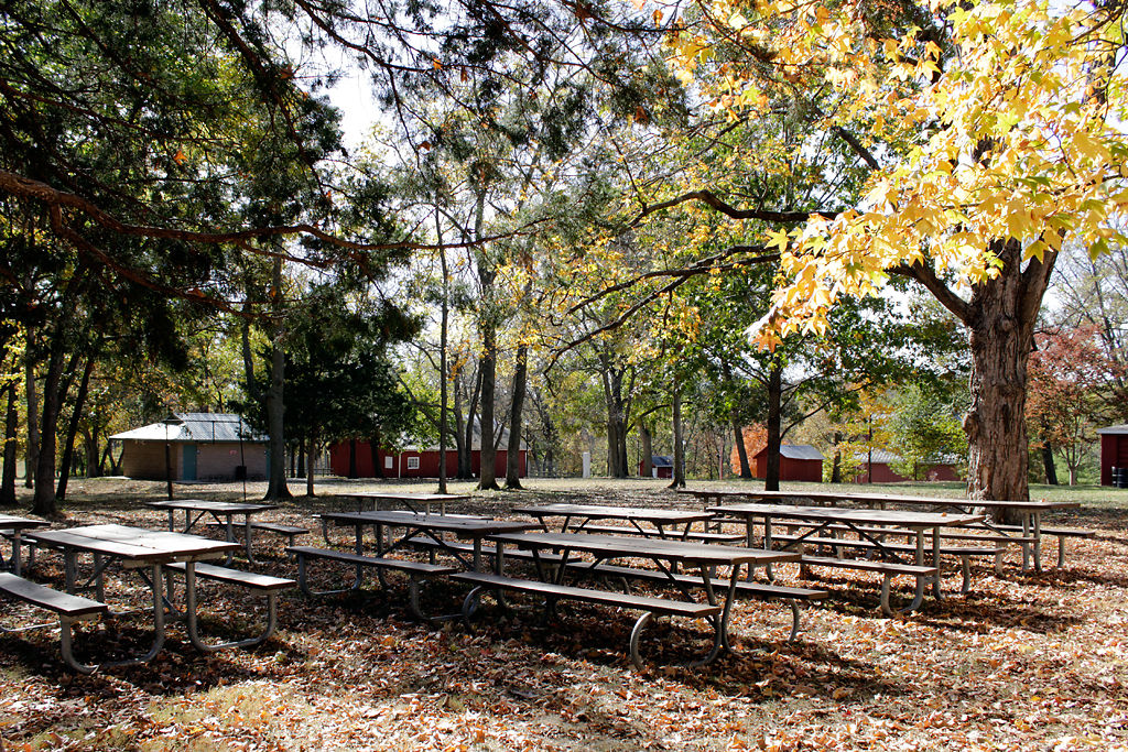 Empty benches sit under the shade at Nifong Park