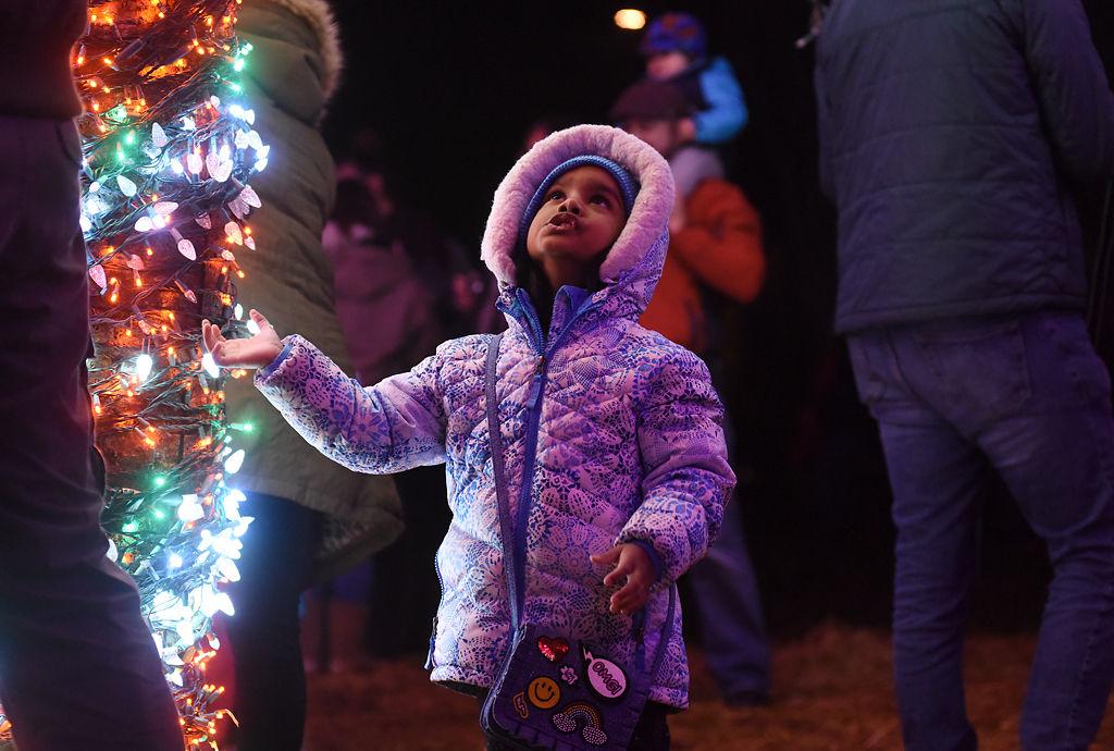 Abigail Charles, 4, examines the Magic Tree