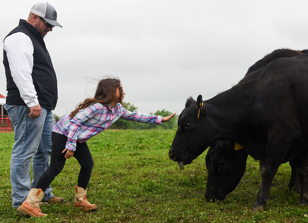 Fred Williams visits the cattle with his daughter Isabelle