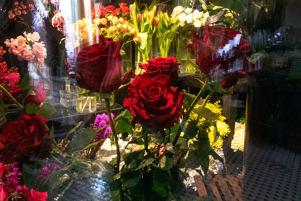 A small collection of roses sits inside a refrigerated room