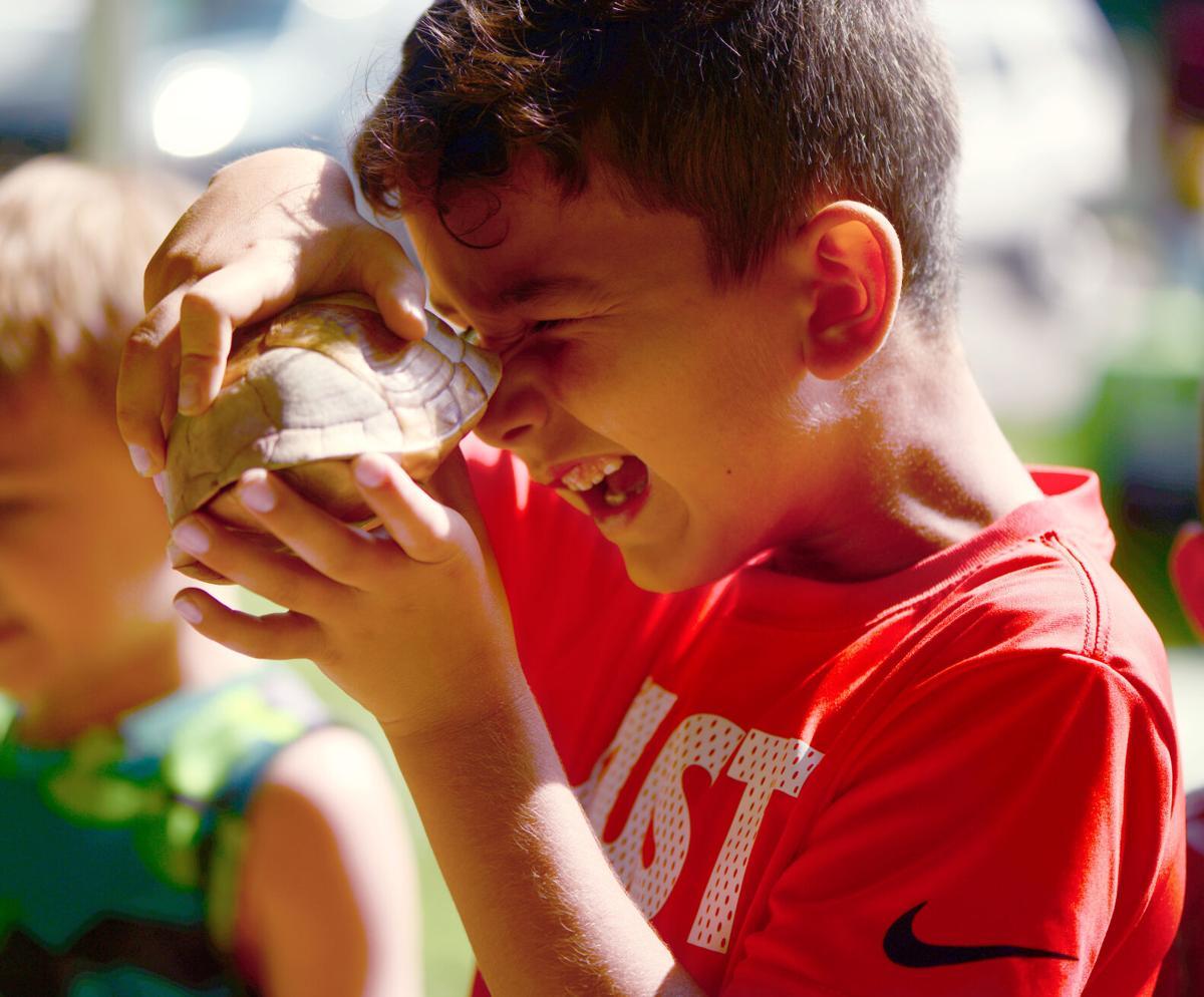 Gatlin Lucas looks inside a turtle shell