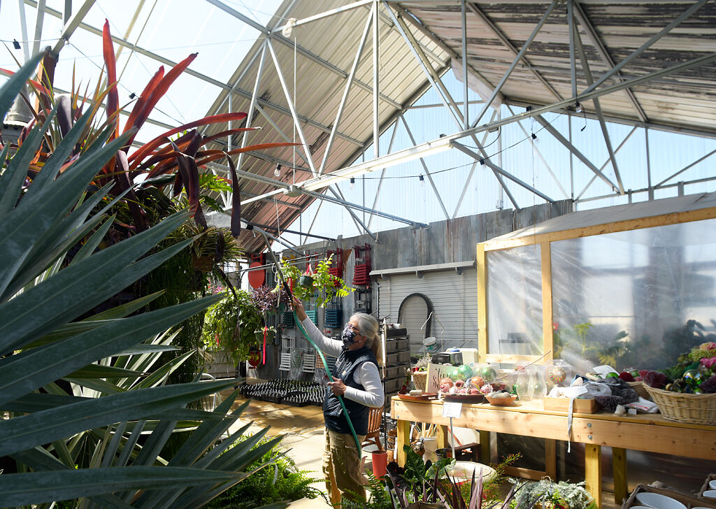 Helmi Sheely, owner of Helmi's Garden, waters plants