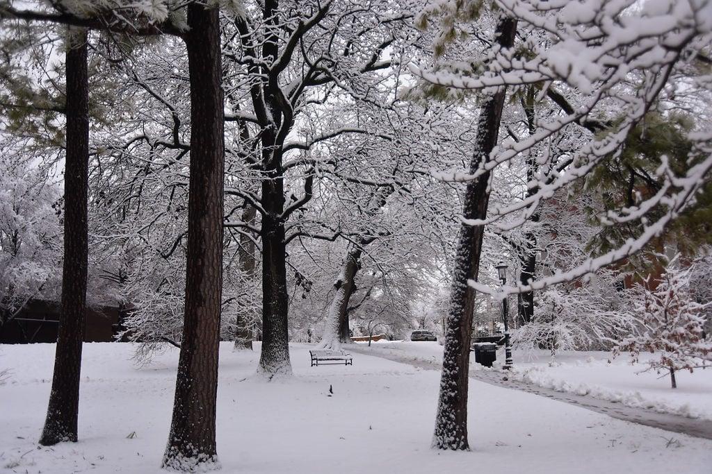 Snowfall carried through Friday morning