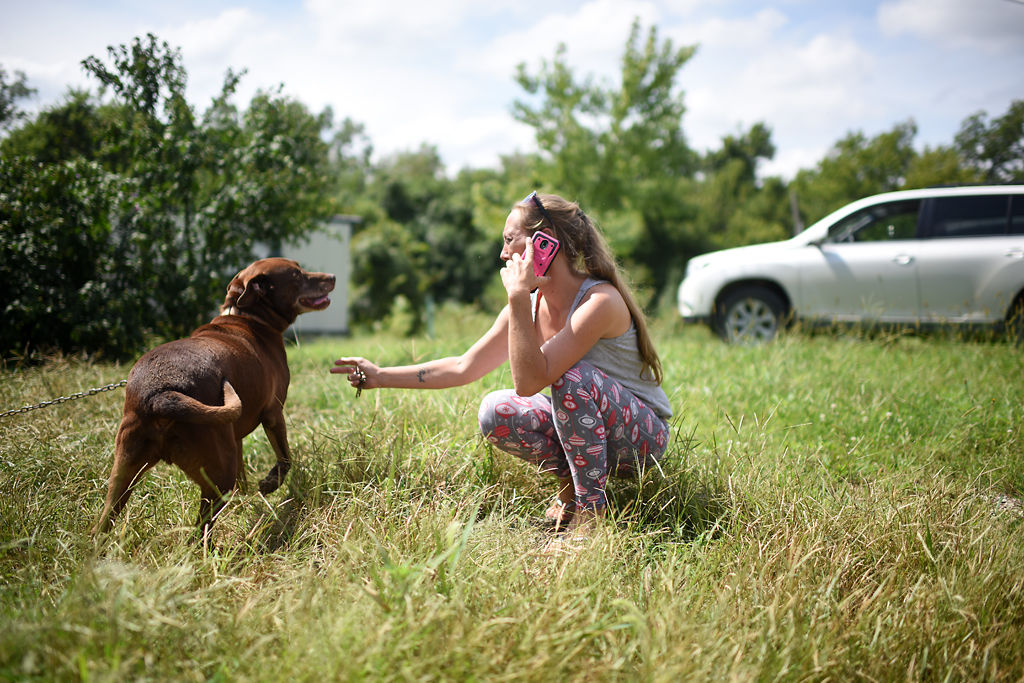 Barbara Doyle reaches out to pet Able, an abandoned dog