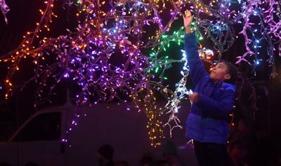 PHOTO GALLERY: Magic Tree at The Village of Cherry Hill lights up for holiday season