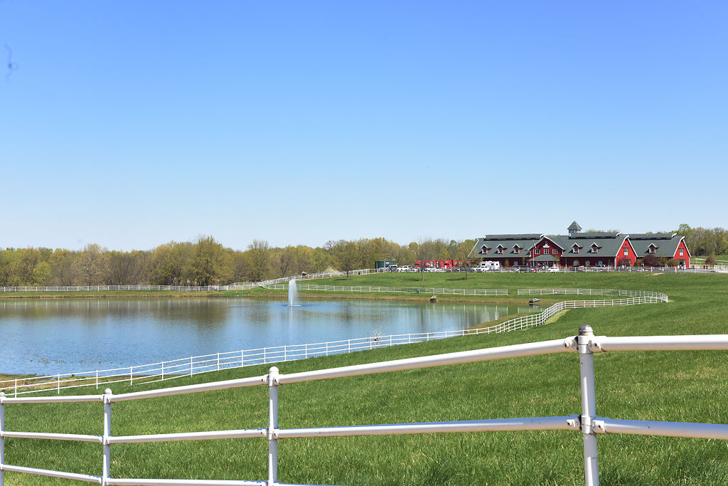 Warm Springs Ranch is home to Budweiser's Clydesdales