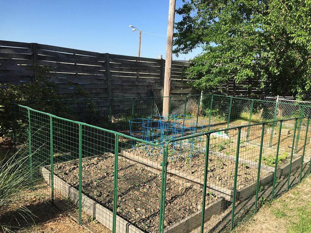 University Subaru, neighbors in friction over fence | Local