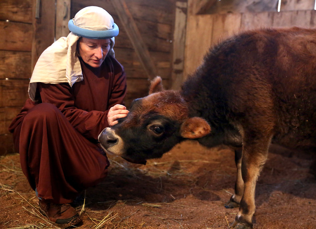 Marohl family shares Christmas story through live Nativity