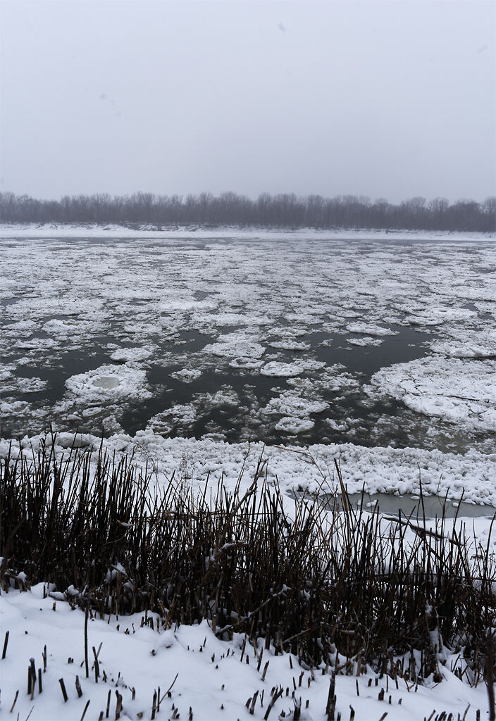 Ice flows down the Missouri River