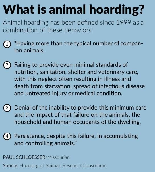 What is animal hoarding?