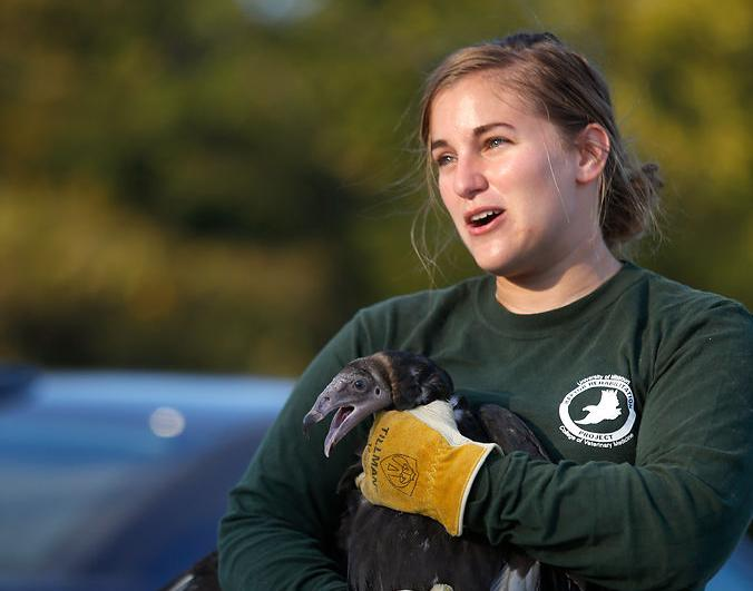 Abby Rainwater holds one of two juvenile vultures