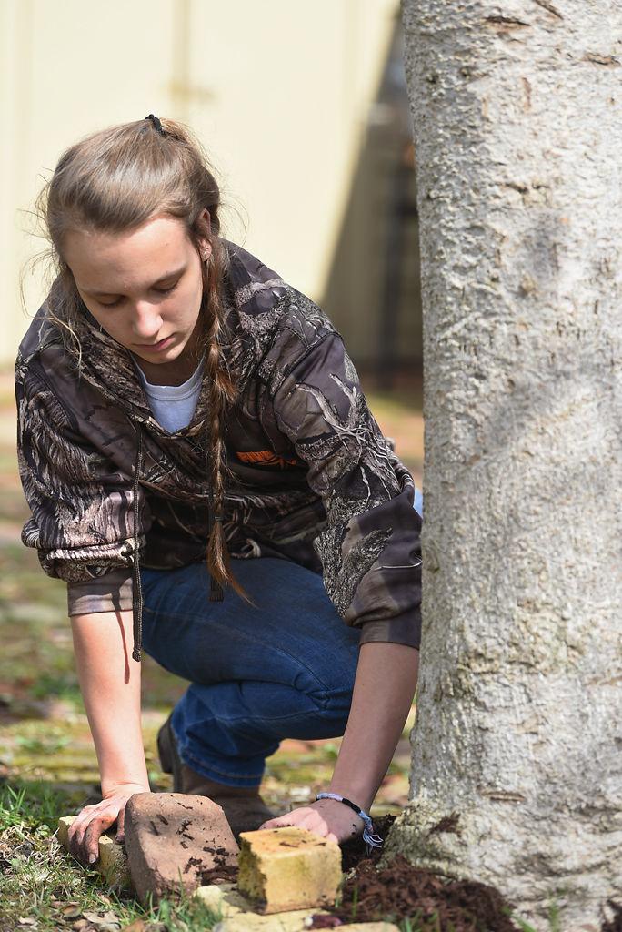 Hailey Emanuel, 16, spreads soil