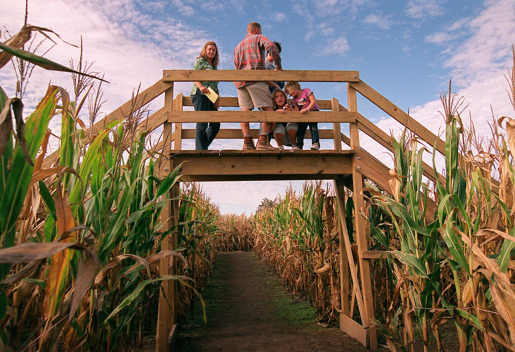 Amanda Gentles, Eric Wiedemann, Lisa Bauer, Audrey Wiedemann, and Abbigale Gentles stand atop a bridge in the middle of Shryock Farm's Spirit of American corn maze
