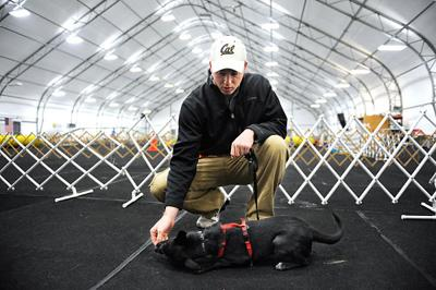 Veterans and Shelter Dogs program helps both ends of the leash