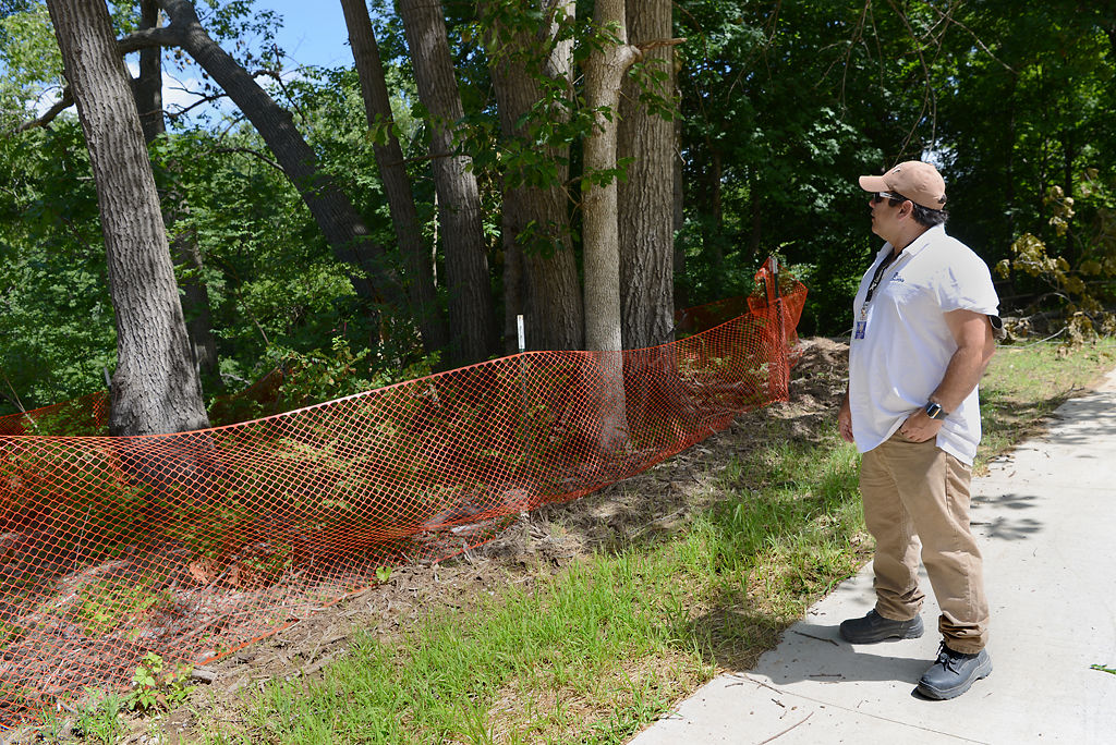 Joseph Anderson, contract compliance officer with the city of Columbia, checks on a stand of trees on Monday