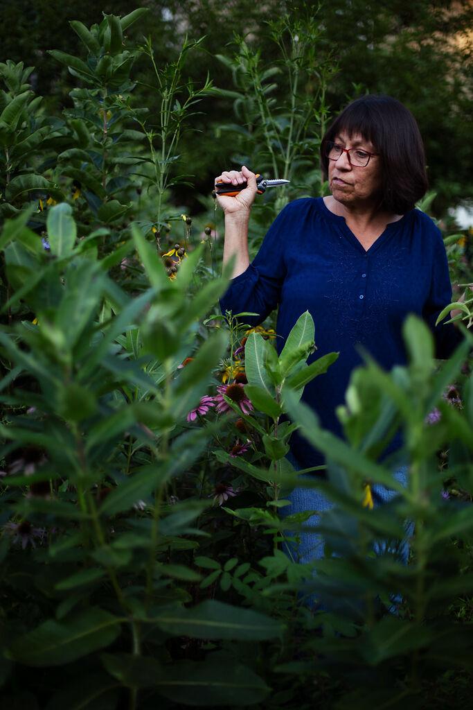 Nadia Navarrete-Tindall shows off native Missouri plants