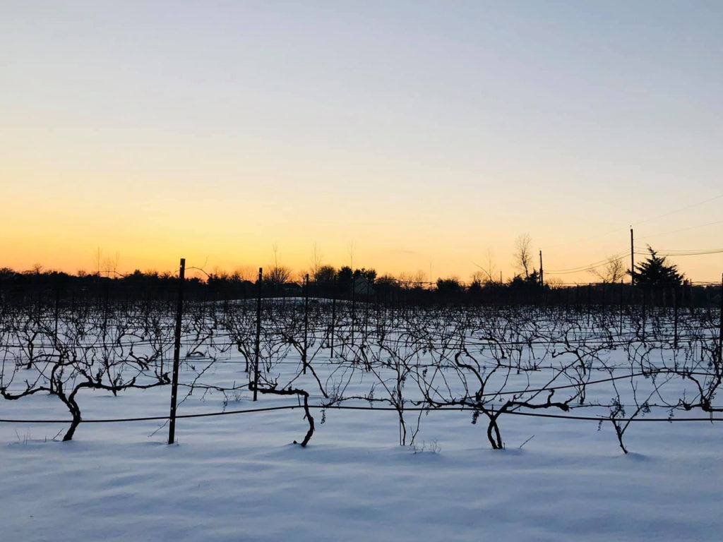 Hopewell Valley Vineyards