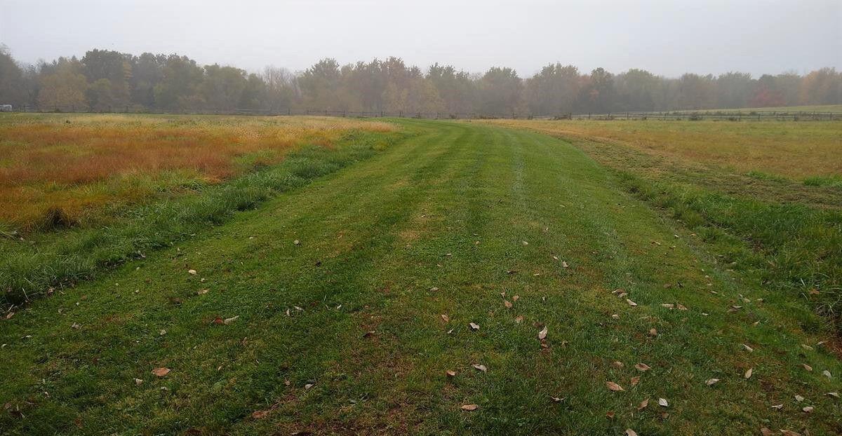 Cifelli Farm Fields D R Greenway image (2)