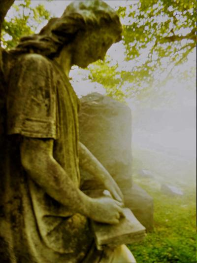 Riverview Cemetery tours.jpg