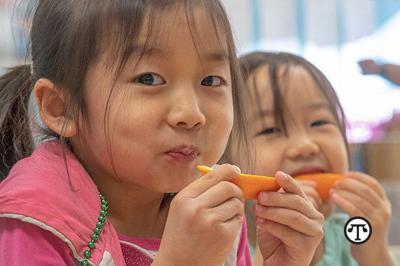 Easy Tips To Reduce Food Waste In Your Child's Lunch Box