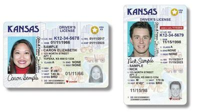 ID cards graphic stock image drivers license
