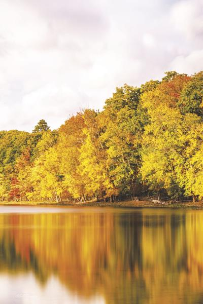 10-3-2020-Valley Angler-Fall Foliage
