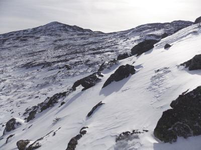 2-2-19 Mount Adams from Lowe's Path