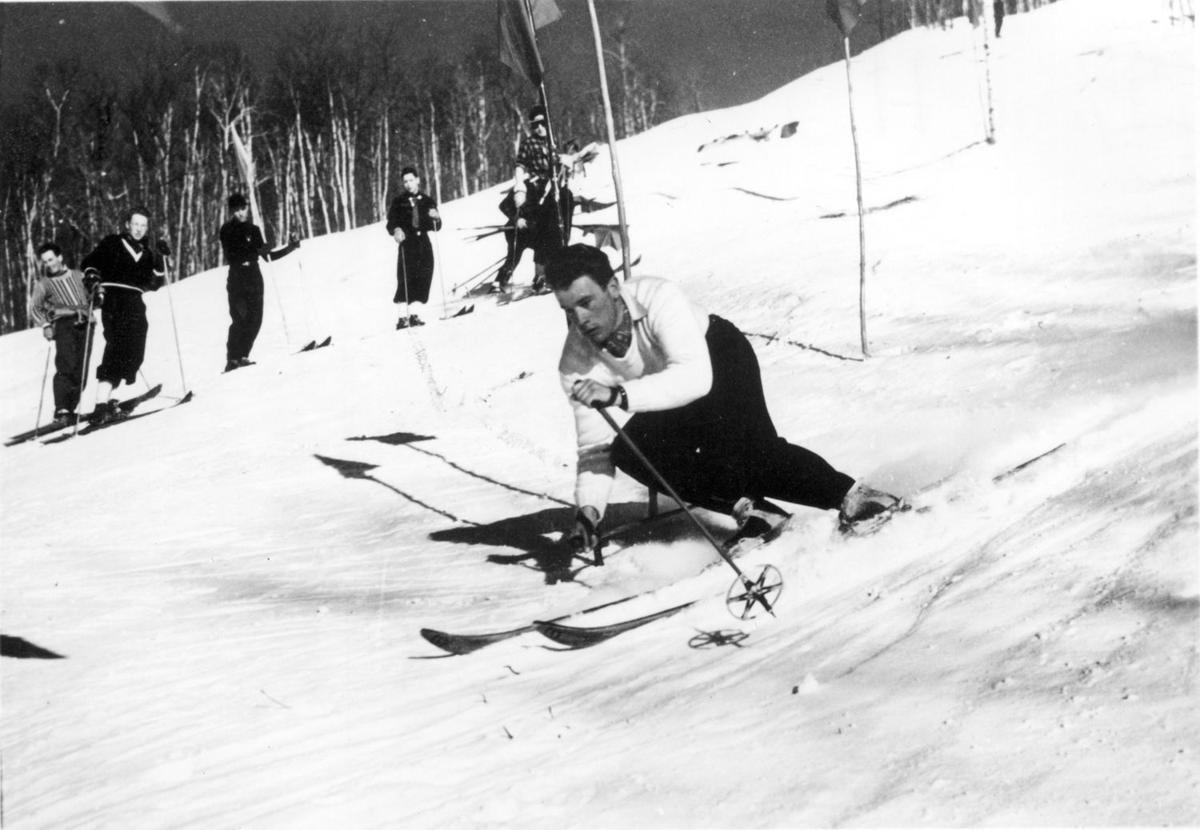toni matt on skis