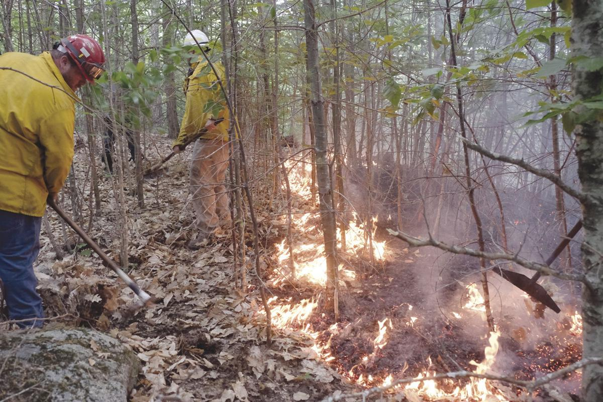 6-29-20 Forest fire