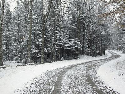 Artificial Christmas Tree Snow