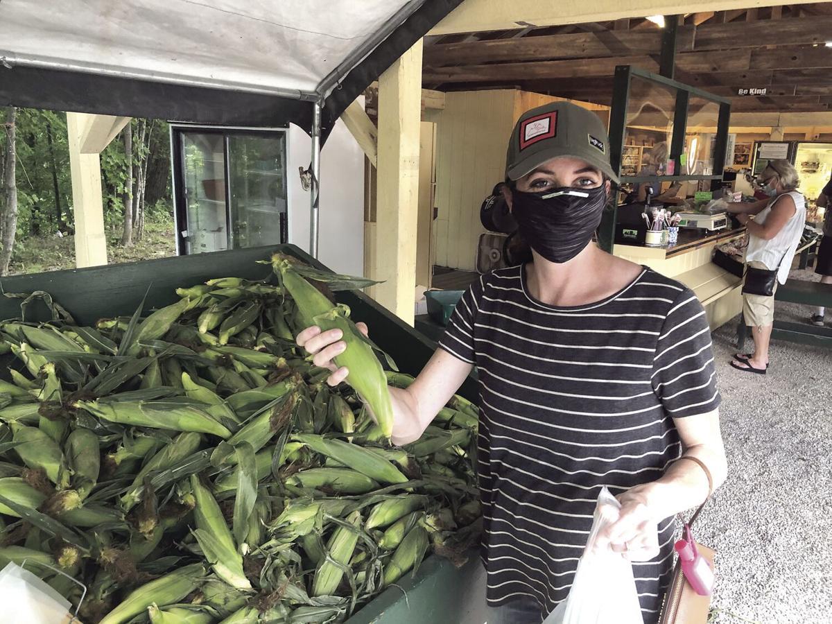 VV - Lauren Hawkins picking corn