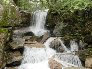 The mysterious Thompson Falls