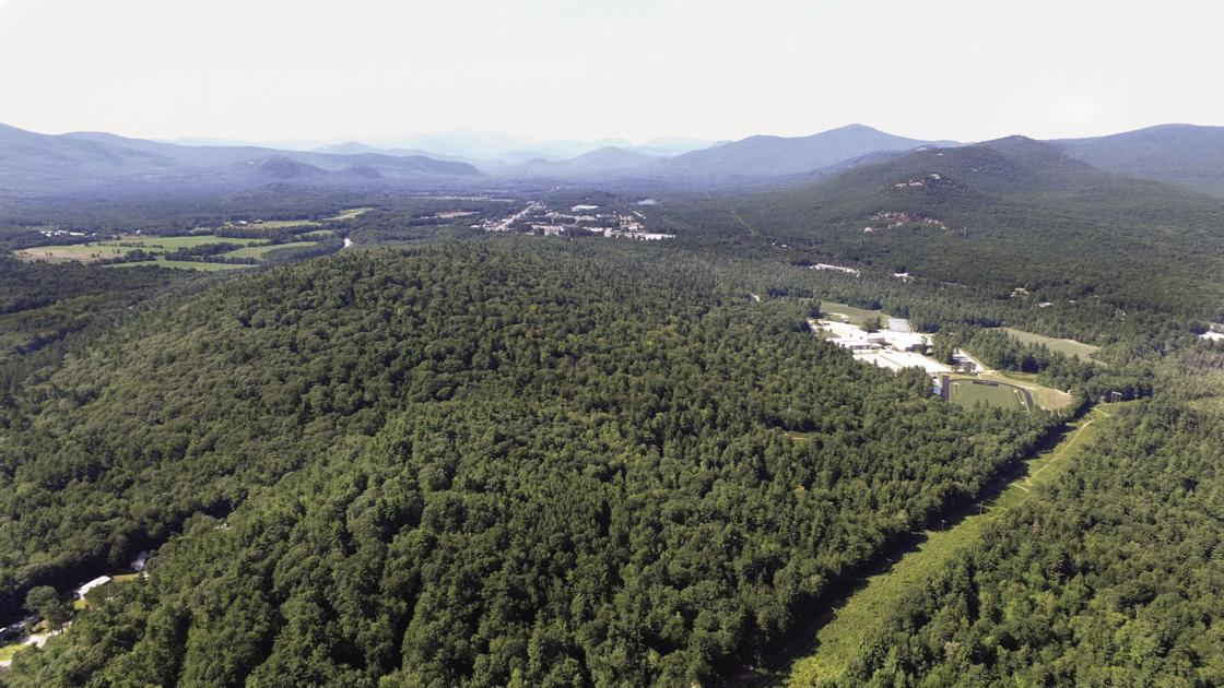 Pine Hill Community Forest to celebrate opening Saturday