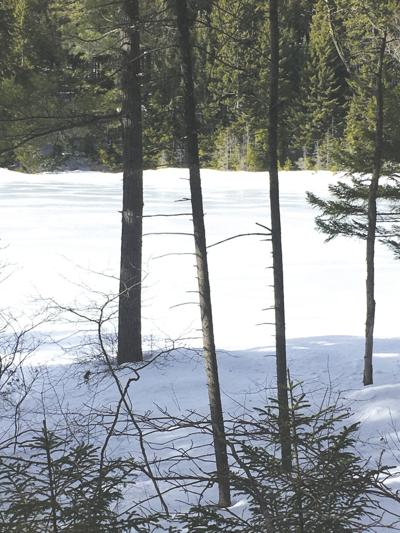3-20-2021 North Country Angling-White Mountain National Forest ponds