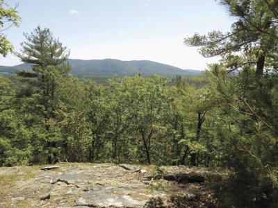 7-17-2021 Parsons-Pleasant Mountain from Mount Tom