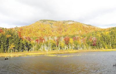 10-10-2020 Parsons-Province Pond