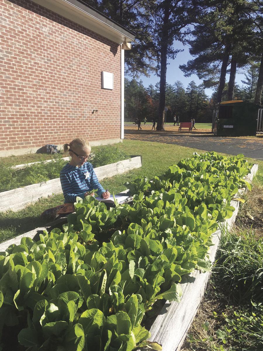 Student In Garden