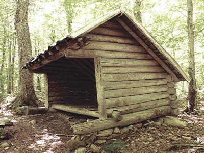 langdon shelter color