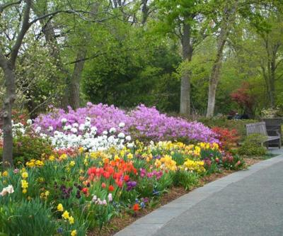 Spring Flower Trails and Gardens, 2019