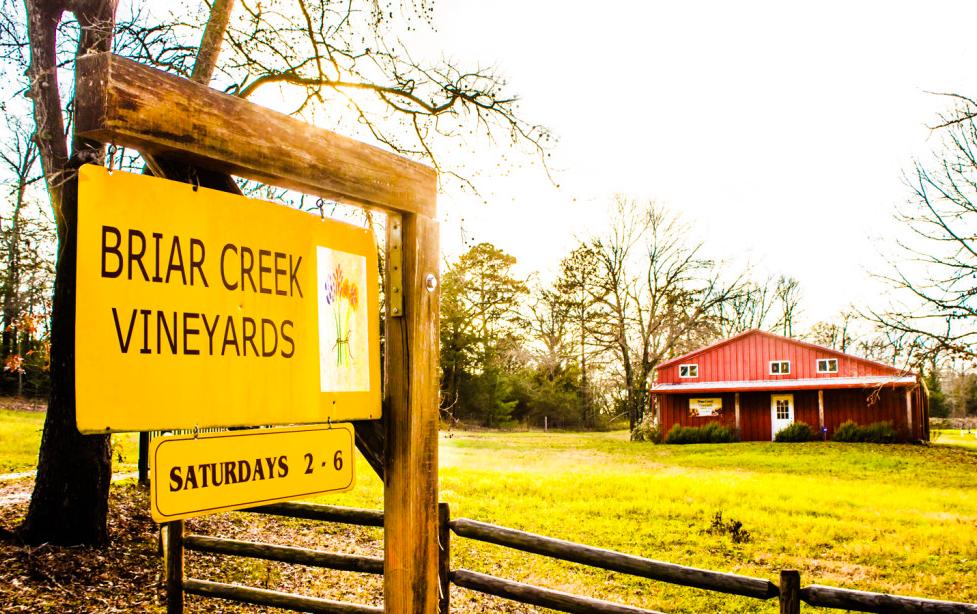 Briar Creek Vineyards