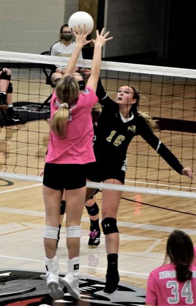 Pottsville volleyball photo