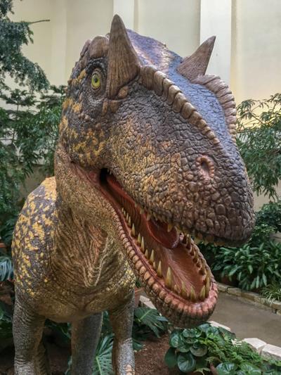 """Dinosaur UpROAR"" exhibit at Lauritzen Gardens"