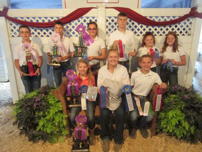 More winners named at Henry County Fair