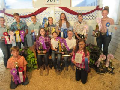 Henry County goat winners
