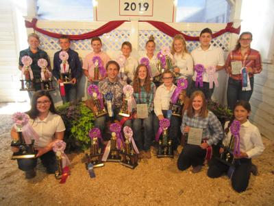 Henry County poultry winners