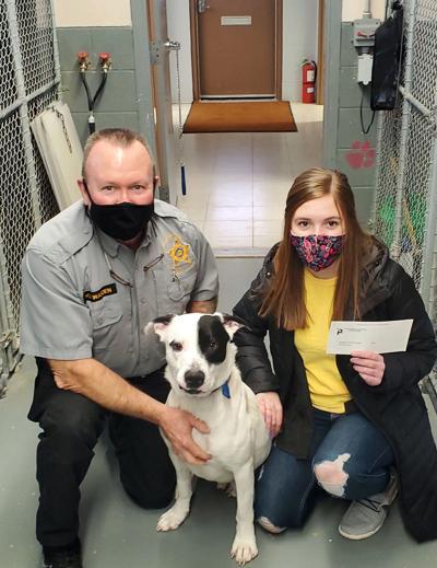 Dog kennel donation