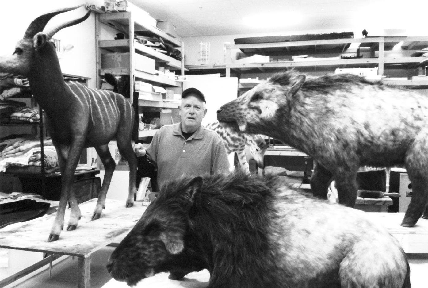 Fetter ark animals