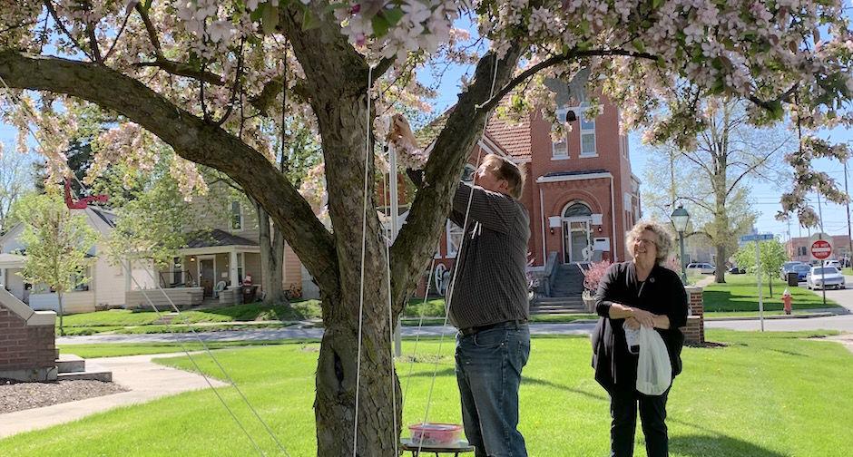 Carousel - prayer tree
